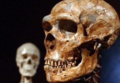 Откриће првог неандерталца из Србије објављено у престижном научном часопису